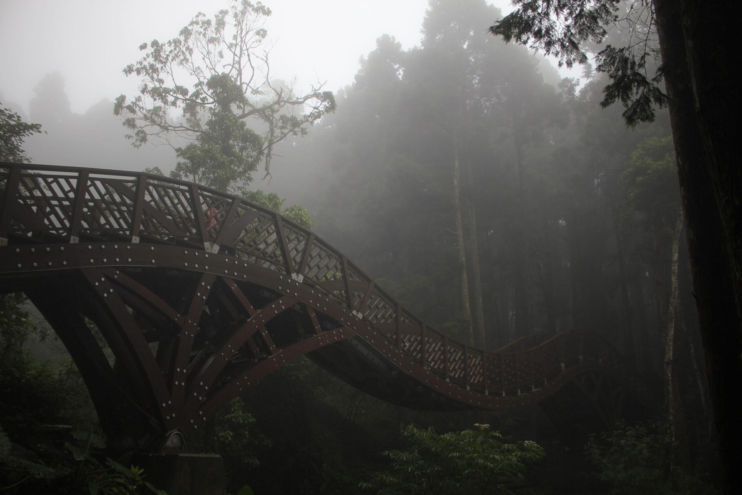 Nebelforschung Taiwan